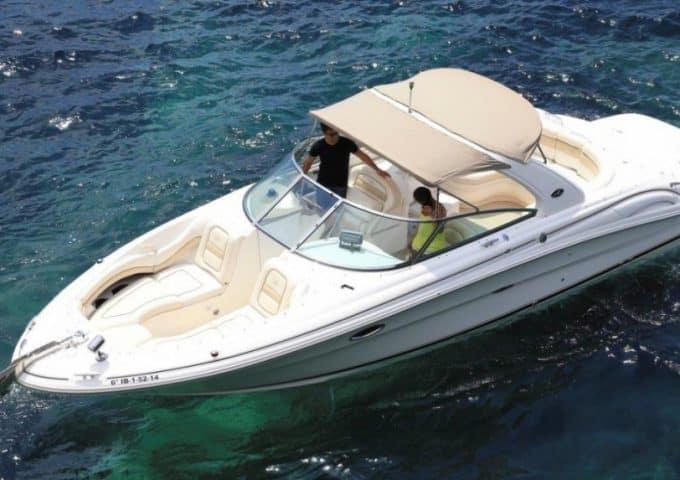 sea ray 290 – N1
